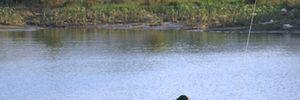 Thanh Hóa: Vớt được xác thanh niên thứ 2 nhảy xuống sông cứu người tự tử