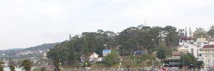 Ngày Lễ Tình nhân tại phố núi Đà Lạt