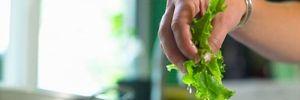 Không còn phải sợ rau phun thuốc độc hại nếu trong bếp luôn có 3 thứ này