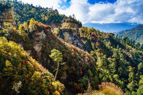 Ve dep xu so Bhutan qua goc nhin nhiep anh gia Viet - Anh 5