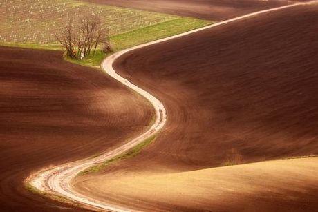 Cánh đồng đẹp như tranh vẽ ở Cộng hòa Séc