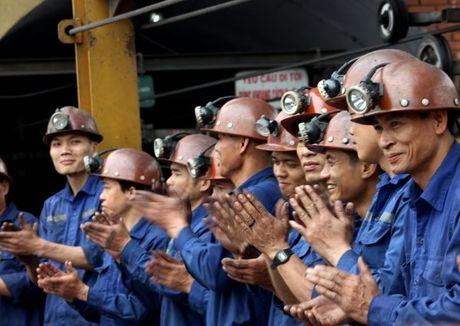 Quang Ninh: Nguoi dep Ha Long trai nghiem tren Vinh - Anh 9