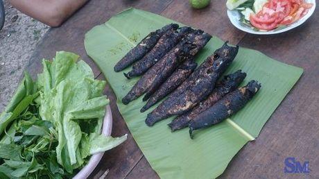 """Thuong thuc """"dung dieu"""" ca loc dong nuong trui dan da - Anh 1"""