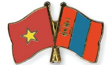 Viet Nam – Mong Co tang cuong hop tac trong linh vuc lap phap va giam sat - Anh 1
