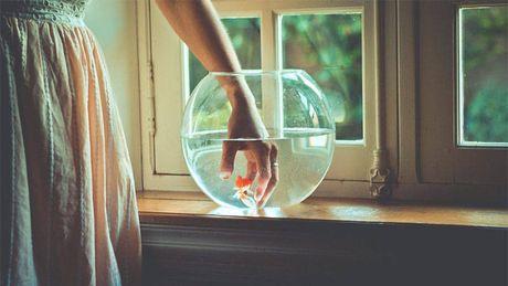 3 186643 Nếu bạn không muốn tình yêu với người ấy rạn nứt thì cần bỏ ngay và luôn những đồ vật này