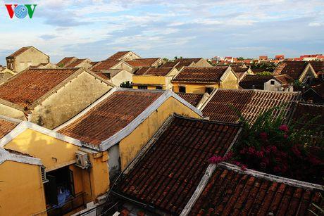 Đường Trần Phú là con đường chính, nơi tập trung nhiều nhất những công trình kiến trúc quan trọng, cũng như những ngôi nhà cổ điển hình cho kiến trúc Hội An. Nhìn từ trên cao, những mái nhà ngói cổ Hội An đẹp như một bức tranh.