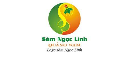Bi quyet nhan dien sam quy Ngoc Linh - Anh 3