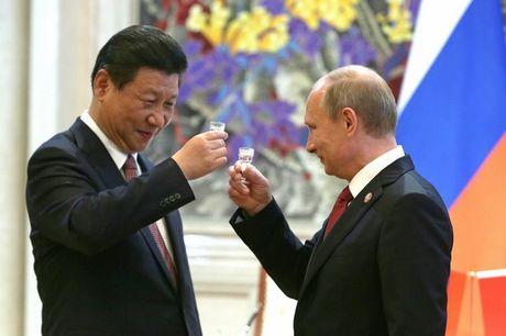 Vi sao Tong thong Nga duoc coi la 'Putin dai de' o TQ? - Anh 2