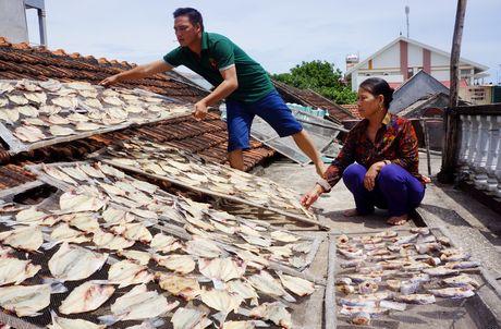 Gần 50 tấn cá lồng chết khi biển Thanh Hóa chuyển màu đỏ
