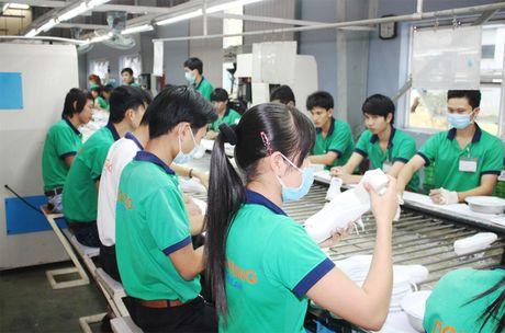 Thu hut dau tu Nhat Ban tai Binh Duong dat 115 trieu USD - Anh 1