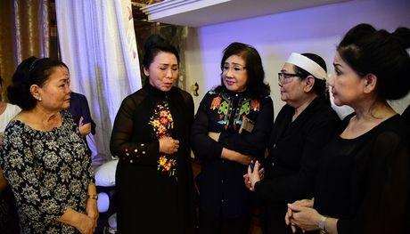 Dong dao nghe si, khan gia den vieng NSND Thanh Tong - Anh 1