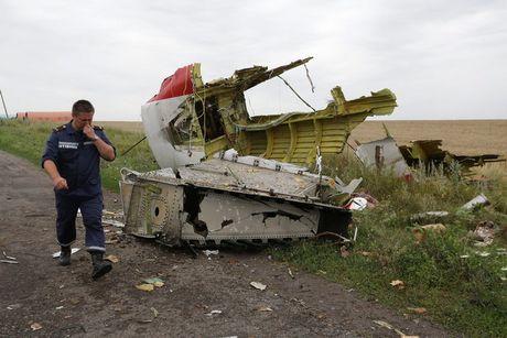 Australia de xuat xet xu vu MH17 theo hinh mau 'Lockerbie' - Anh 1