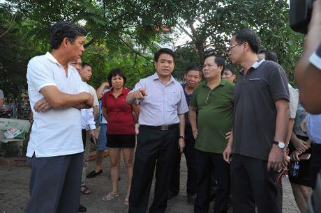 Chu tich Ha Noi chi dao 7 bien phap xu ly su co ca chet trang ho Tay - Anh 1