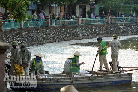 Ca chet hang loat o ho Tay: Hang tram cong nhan vot tu sang den chieu chua het - Anh 1
