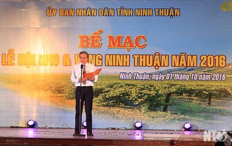 "Ninh Thuan: Be mac le hoi ""Nho va Vang Ninh Thuan 2016"" - Anh 1"
