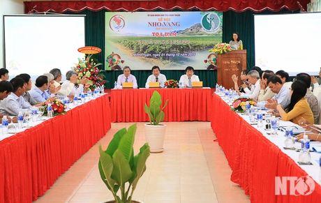 "Ninh Thuan: Be mac le hoi ""Nho va Vang Ninh Thuan 2016"" - Anh 3"