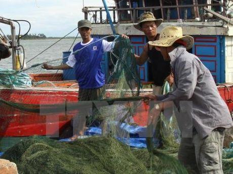 Bien dao Viet Nam: Can them giai phap khai thong ho tro ngu dan phat trien thuy san - Anh 2