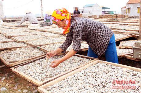 Ngu dan Tien Thuy ron rang vao mua ca Bac - Anh 5