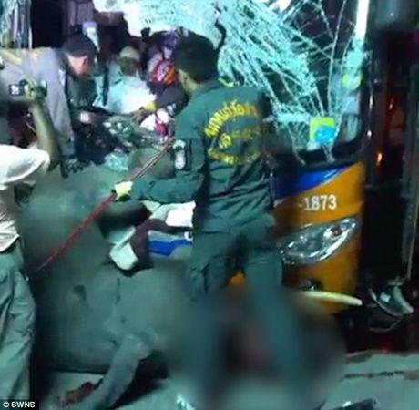 Thai Lan: Xe bus dau dau voi song chuong, ket cuc bi tham - Anh 2