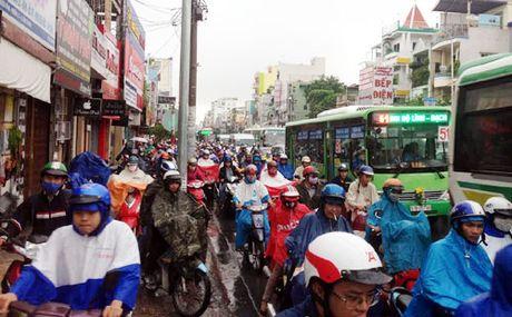 Mua lon dau tuan, nguoi dan TP HCM khon kho di lam - Anh 1