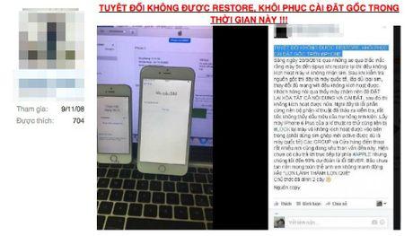 Nhieu iPhone hang xach tay o Viet Nam bi bien thanh 'cuc gach' - Anh 1