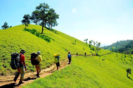 Cung duong trekking dep nhat Viet Nam 'hop hon' phuot thu - Anh 1