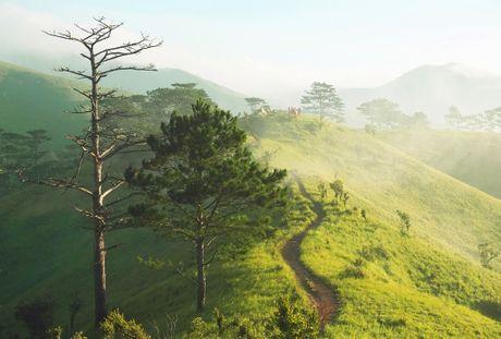 Cung duong trekking dep nhat Viet Nam 'hop hon' phuot thu - Anh 5
