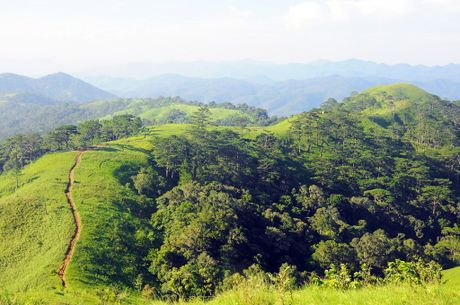 Cung duong trekking dep nhat Viet Nam 'hop hon' phuot thu - Anh 7