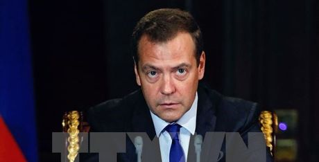 Thu tuong Medvedev: Nga can dieu chinh 'co may nha nuoc' - Anh 1