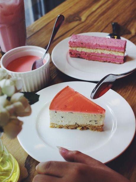 Truy tim 7 tiem banh sakura cheesecake dep nuc long o Sai thanh - Anh 1