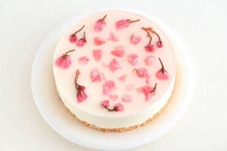 Truy tim 7 tiem banh sakura cheesecake dep nuc long o Sai thanh - Anh 2