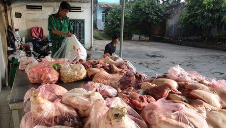 Hoan Ho: Thong diep quyet liet cua Chinh phu doi voi thuc pham ban - Anh 1