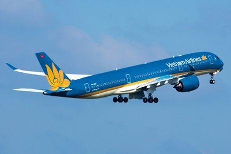 Hai may bay Boeing bi chim va vao dong co - Anh 1