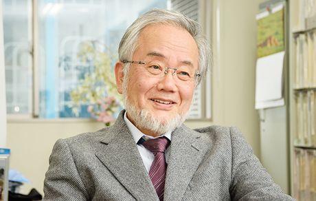 Chu nhan Nobel Y sinh 2016 day tai dai hoc hang dau Nhat Ban - Anh 1