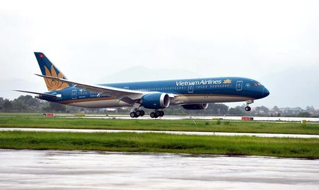 Chim va hong dong co Boeing xin nhat cua VietnamAirlines - Anh 1