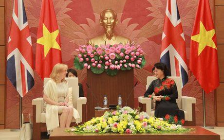 Chu tich Quoc hoi Nguyen Thi Kim Ngan tiep Pho Chu tich Ha vien Anh - Anh 1