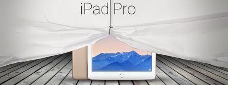 Apple se cho ra mat 3 mau iPad thuoc dong Pro: 7,9-inch, 10,1-inch va 12,9-inch moi? - Anh 1