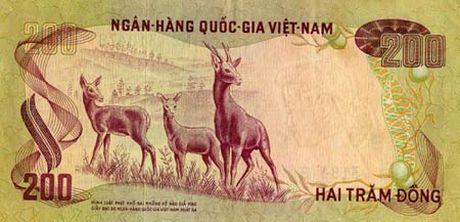 Nhung net dep tu tien giay Viet Nam qua nhung nam thang lich su - Anh 5