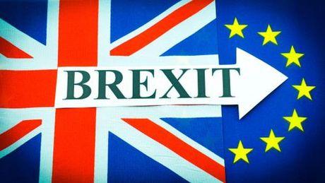 100 ngay sau ket qua Brexit, DN Anh day manh hang hoa noi dia - Anh 1