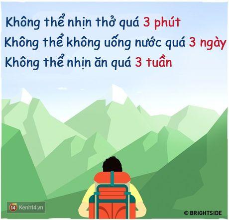 14 su that don gian ma co the cuu song ban bat cu luc nao - Anh 4