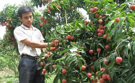 Day manh ung dung KH&CN: Dieu khong the khac duoc - Anh 1