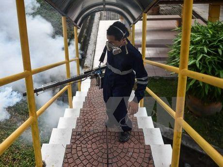 Phan ung cua Malaysia truoc huong dan du lich cua My ve Zika - Anh 1