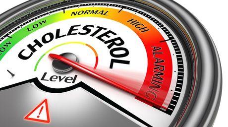 Nhung dieu nen biet de khong lo lang qua ve cholesterol - Anh 6
