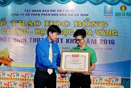 Trao hoc bong 'Dam Ca Mau - Hat ngoc mua vang' - Anh 2