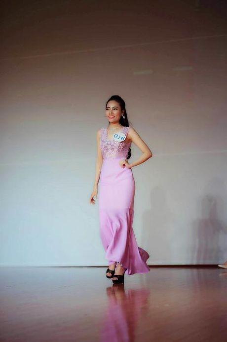 Nguyen Thi Hong Gam lot Top 3 Hoa hau Ao dai Viet Nam tai Nhat - Anh 3