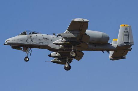 Suc manh cuong kich 'lon loi' A-10 Thunderbolt II - Anh 12