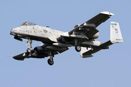 Suc manh cuong kich 'lon loi' A-10 Thunderbolt II - Anh 13