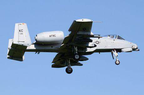 Suc manh cuong kich 'lon loi' A-10 Thunderbolt II - Anh 1