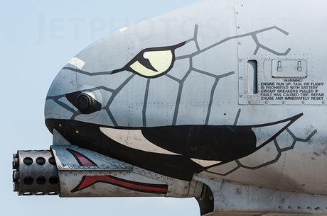 Suc manh cuong kich 'lon loi' A-10 Thunderbolt II - Anh 9