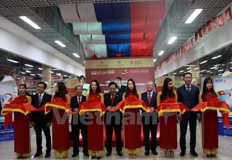 Hoi cho 'Tuan le hang Thanh pho Ho Chi Minh 2016' tai Moskva - Anh 1
